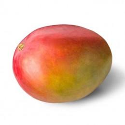Mango vaisiai,  1 vnt...